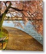 Meet Me At Our Bench Metal Print by Lois Bryan