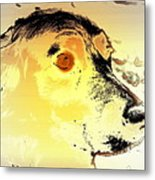 Feeling Like The Most Melancholic Dog In The World  Metal Print