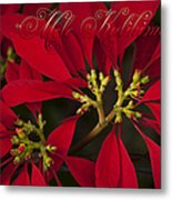 Mele Kalikimaka - Poinsettia  - Euphorbia Pulcherrima Metal Print