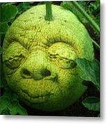 Melon Head Metal Print