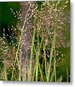 Memories Of Springtime Metal Print