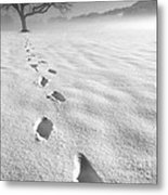 Memory Traces Of A Cold Day Metal Print