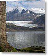 Mendenhall Glacier In Late Fall Metal Print