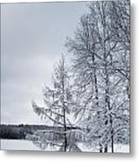 Mendon Pond Trees Metal Print