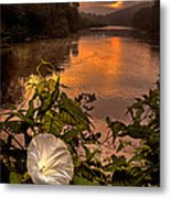 Meramec River At Chouteau Claim Metal Print