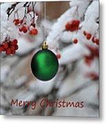 Merry Christmas 4 Metal Print