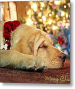 Merry Christmas From Lily Metal Print