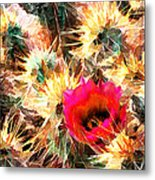 Mesh Of Cactus Needles Metal Print