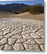 Mesquite Dune Mosaic Metal Print