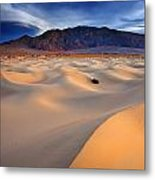 Mesquite Gold Metal Print by Darren  White