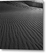Mesquite Sand Dunes  Metal Print