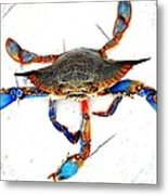 Mess With Me............sold. Metal Print