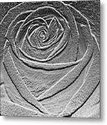 Metal Rose Metal Print