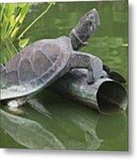 Metal Turtle Metal Print