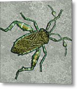 Metallic Green And Gold Prehistoric Insect  Metal Print