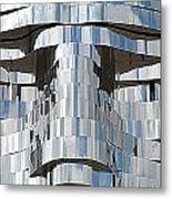 Metalmorphosis Eyes Metal Print by Randall Weidner
