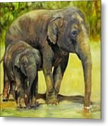 Thirsty, Methai And Baylor, Elephants  Metal Print
