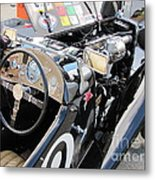 Mg Tc In Paddock Metal Print
