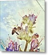 #mgmarts #flower #spring #summer #bee Metal Print