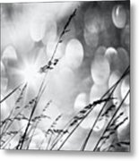 #mgmarts #grass #weed #wind #field Metal Print