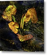 Michigan Fresh Water Ripples Metal Print