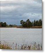 Michigan Wetland Metal Print