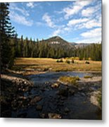 Middle Fork Of The San Joaquin River Metal Print