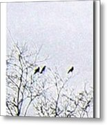 Middle March Metal Print