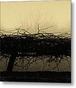 Middlethorpe Tree In Fog Antique Yellow Panorama Metal Print