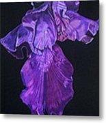 Midnight Iris Metal Print