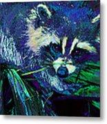 Midnight Racoon Metal Print
