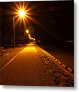 Midnight Walk Metal Print by Olivier Le Queinec