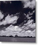 Midwest Corn Field Bw Metal Print by Steve Gadomski