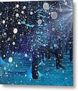 Midwinter Metal Print