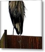 Mighty High Heron  Metal Print