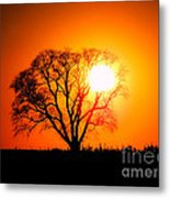 Mighty Oak Sunset Metal Print