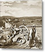 Mike Noon Monterey Whaler On Montereys Wharf  Circa 1890 Metal Print