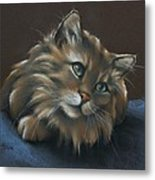 Miko Metal Print by Cynthia House