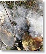 Milkweed Landing Metal Print