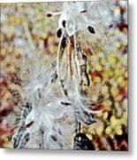 Milkweed Pod On Hart-montague Trail In Northern Michigan Metal Print