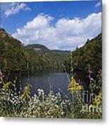 Mill Creek Lake - D001303 Metal Print
