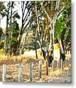 Miller Road Metal Print by Artist and Photographer Laura Wrede