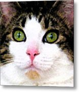 Mina's Green Eyes Metal Print