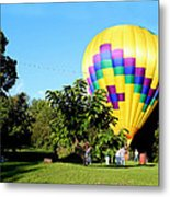 Mind If I Land In Your Backyard 1 Metal Print