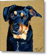 Miniature Pinscher Dog Painting Metal Print