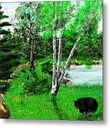 Minnesota Birch Lake And Bear Metal Print