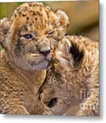 Minor Collision Metal Print