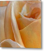 Mirage Rose Metal Print