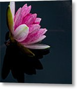 Mirror... Mirror On The Water Metal Print