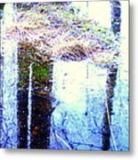 Climbing The Mirror Trees Metal Print